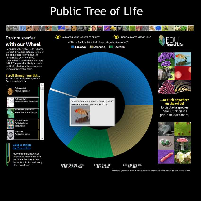 The Public Tree of Life software developed by Tucknologies